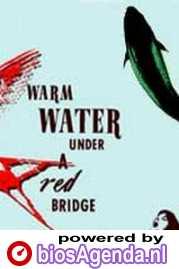 Poster van 'Warm Water Under a Red Bridge' © 2002 Filmmuseum