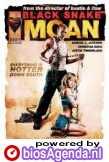 Poster Black Snake Moan (c) Universal Pictures International