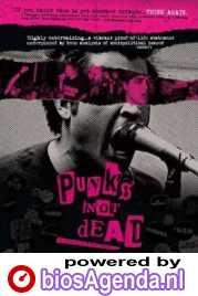 Poster Punk's Not Dead