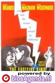poster 'The Fugitive Kind' (c) 1959 United Artists