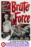 Poster Brute Force