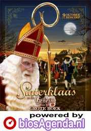 Poster Sinterklaas en het geheim van het grote boek (c) RCV Entertainment