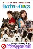Hotel for Dogs (c) Universal Pictures