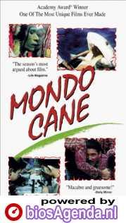 DVD-hoes Mondo Cane