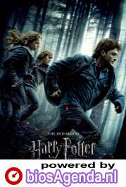 Harry Potter and the Deathly Hallows: Part I poster, © 2010 Warner Bros.