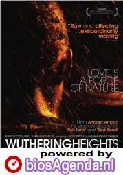 Wuthering Heights poster, copyright in handen van productiestudio en/of distributeur