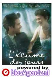 L'écume des jours poster, copyright in handen van productiestudio en/of distributeur