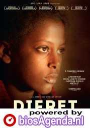 Difret poster, © 2015 Cinéart