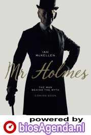 Mr. Holmes poster, © 2015 Paradiso