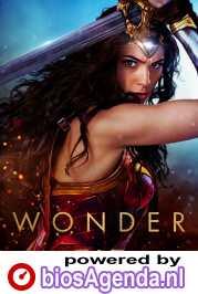 Wonder Woman poster, © 2017 Warner Bros.