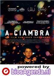 A Ciambra poster, © 2017 Arti Film