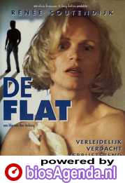 De Flat poster, copyright in handen van productiestudio en/of distributeur