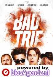 Bad Trip poster, copyright in handen van productiestudio en/of distributeur