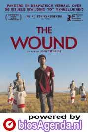 The Wound poster, © 2017 Arti Film