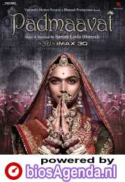 Padmaavat poster, copyright in handen van productiestudio en/of distributeur