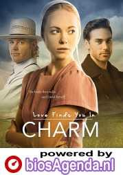 Love Finds You in Charm poster, copyright in handen van productiestudio en/of distributeur