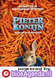 Peter Rabbit poster, © 2018 Universal Pictures International