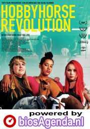 Hobbyhorse Revolution poster, © 2017 Windmill film