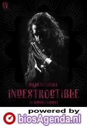Indestructible. El alma de la salsa poster, copyright in handen van productiestudio en/of distributeur