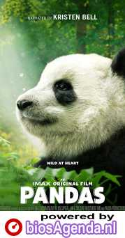 Pandas poster, copyright in handen van productiestudio en/of distributeur