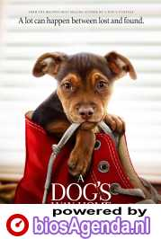 A Dog's Way Home poster, © 2019 Universal Pictures International