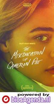 The Miseducation of Cameron Post poster, copyright in handen van productiestudio en/of distributeur