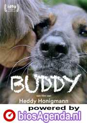 Buddy poster, copyright in handen van productiestudio en/of distributeur