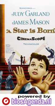 A Star Is Born poster, copyright in handen van productiestudio en/of distributeur