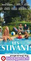 The Summer House poster, copyright in handen van productiestudio en/of distributeur