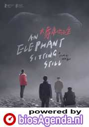 An Elephant Sitting Still poster, © 2018 MOOOV Film Distribution