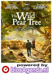 The Wild Pear Tree poster, © 2018 September