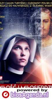 Love and Mercy poster, copyright in handen van productiestudio en/of distributeur