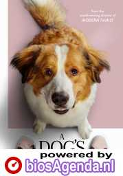 A Dog's Journey poster, © 2019 WW entertainment