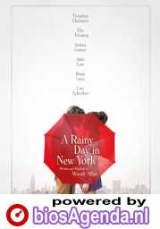 A Rainy Day in New York poster, © 2019 Paradiso