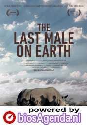 Last Male Standing poster, © 2019 Cinema Delicatessen