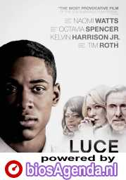 Luce poster, © 2019 The Searchers