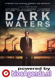 Dark Waters poster, © 2019 WW entertainment