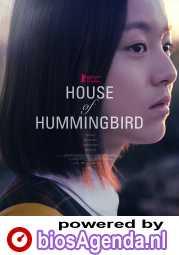 House of Hummingbird poster, © 2018 September
