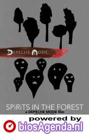 Spirits in the Forest poster, copyright in handen van productiestudio en/of distributeur