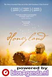 Honeyland poster, copyright in handen van productiestudio en/of distributeur