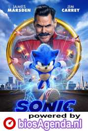 Sonic the Hedgehog poster, © 2020 Universal Pictures International