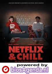 Netflix & Chill poster, copyright in handen van productiestudio en/of distributeur