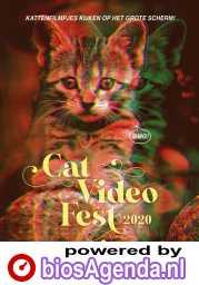 CatVideoFest 2020 poster, © 2020 Cinema Delicatessen
