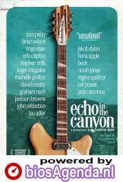 Echo in the Canyon poster, copyright in handen van productiestudio en/of distributeur