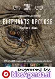 Elefanten hautnah poster, © 2018 M&N Film Distribution