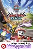 Paw Patrol: Ready, Race, Rescue! poster, copyright in handen van productiestudio en/of distributeur