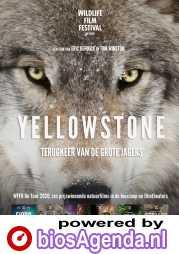 Yellowstone poster, copyright in handen van productiestudio en/of distributeur