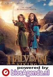 Halvdan Viking poster, copyright in handen van productiestudio en/of distributeur