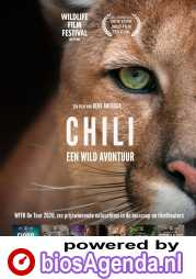 Chili poster, © 2020 M&N Film Distribution