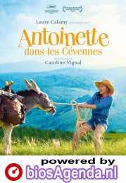 My Donkey, My Lover & I poster, © 2020 Cinéart